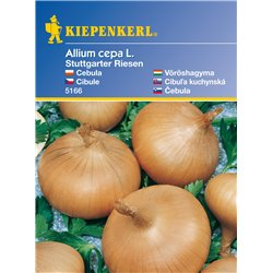 Ortega 18 pcs Standardized Seeds Nice